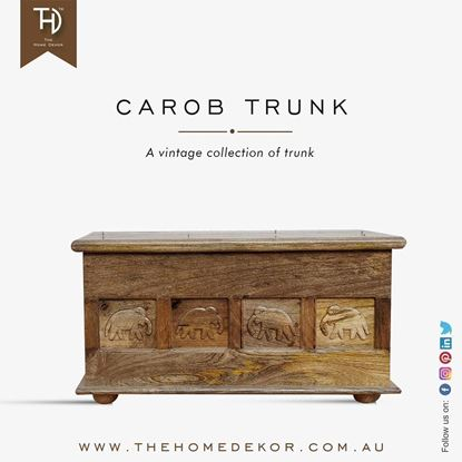 Mango wood trunk